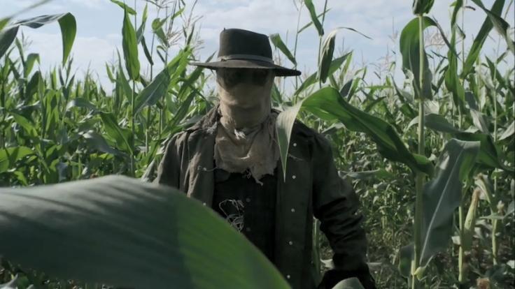 thh_scarecrow_2